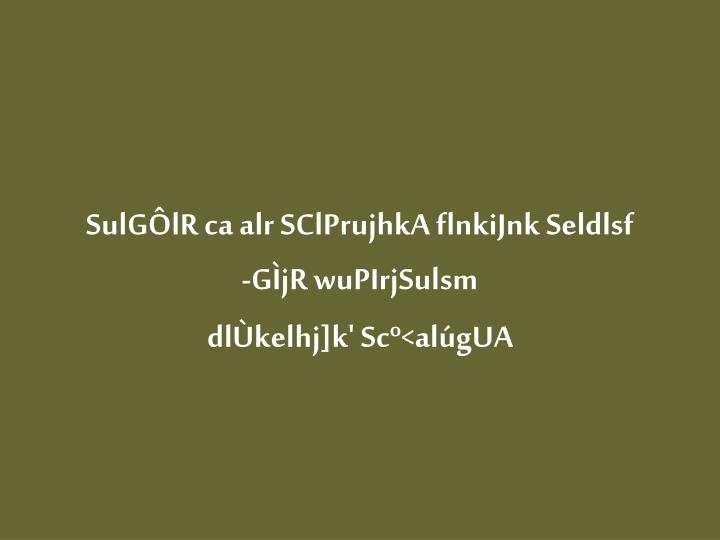 SulGÔlR ca alr SClPrujhkA flnkiJnk Seldlsf
