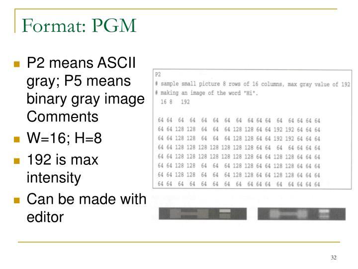 Format: PGM