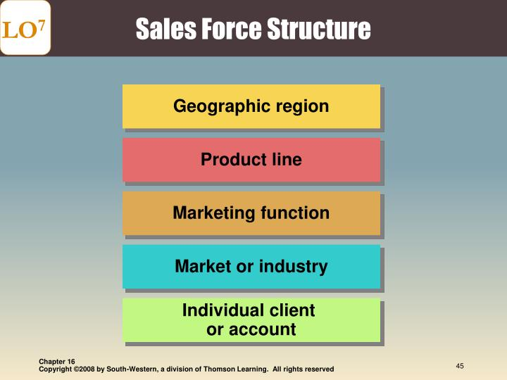 Sales Force Structure