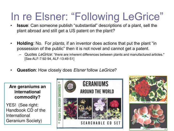 "In re Elsner: ""Following LeGrice"""