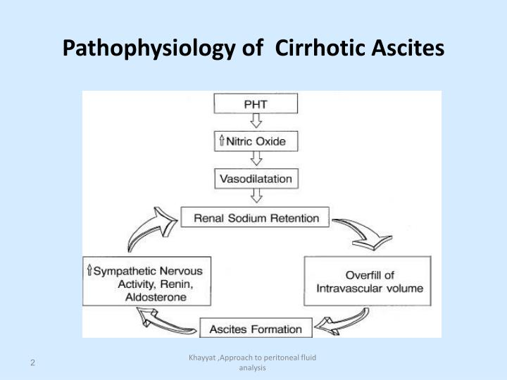 Pathophysiology of cirrhotic ascites