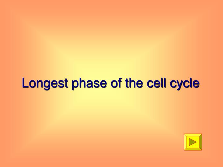 Longest phase of the cell cycle