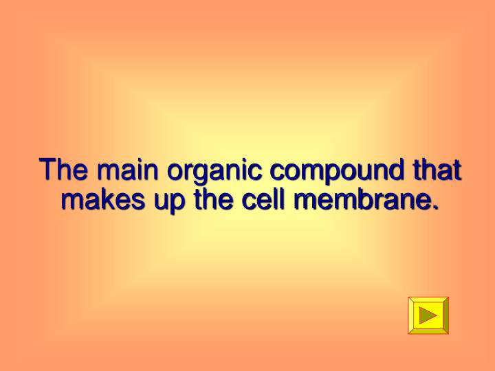 The main organic compound that makes up the cell membrane.