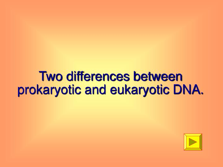 Two differences between prokaryotic and eukaryotic DNA.