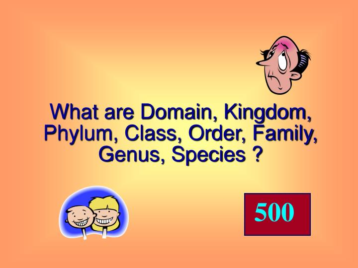 What are Domain, Kingdom, Phylum, Class, Order, Family, Genus, Species ?