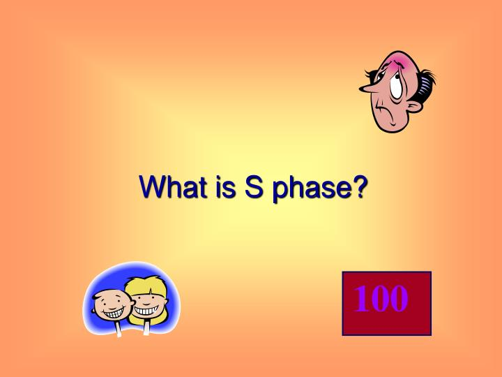 What is S phase?