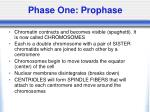 phase one prophase