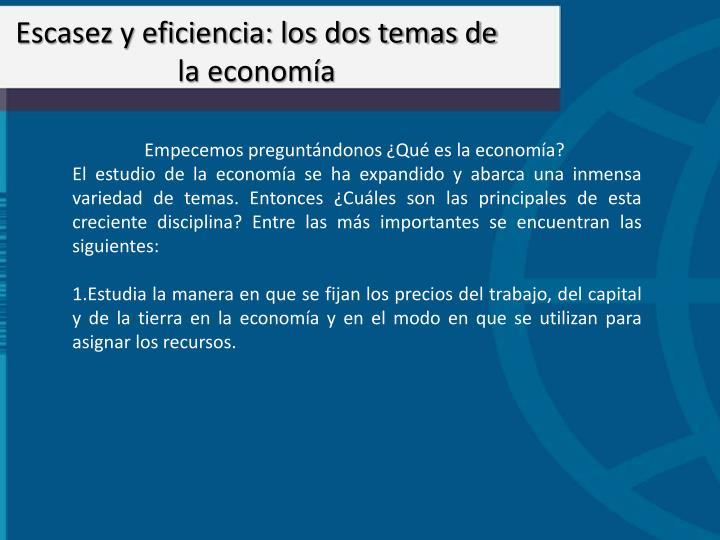 Escasez y eficiencia: los dos temas de la economa