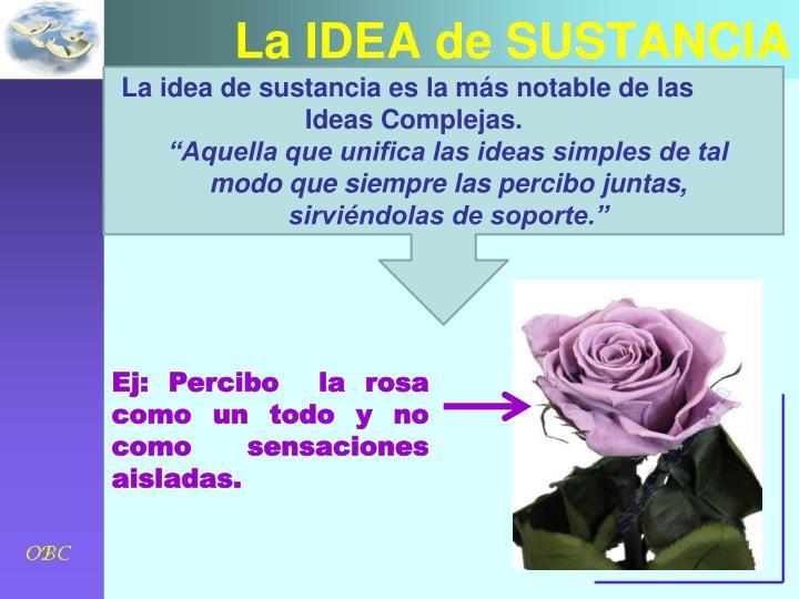 La IDEA de SUSTANCIA