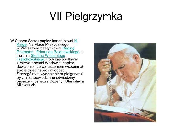VII Pielgrzymka