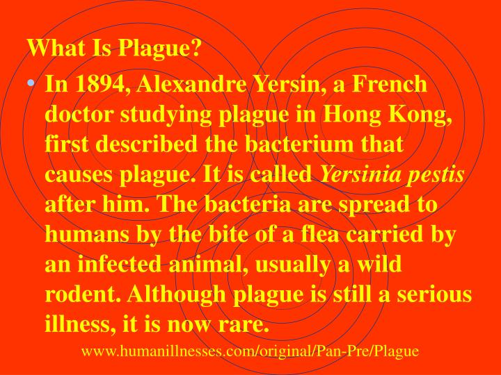 What Is Plague?