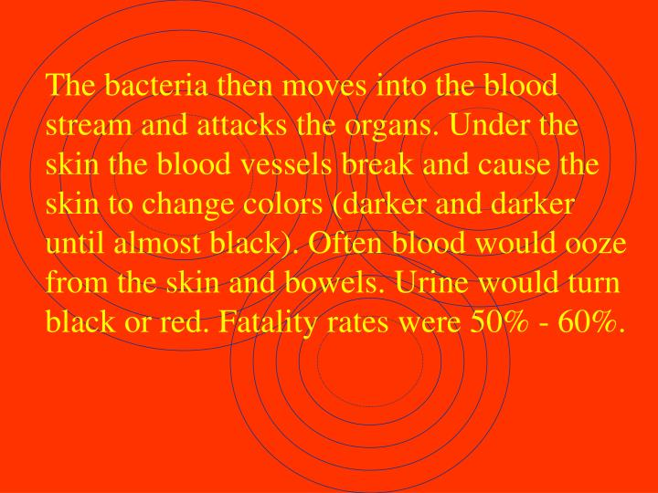 The bacteria then moves into the blood stream and attacks the organs. Under the skin the blood vessels break and cause the skin to change colors (darker and darker until almost black). Often blood would ooze from the skin and bowels. Urine would turn black or red. Fatality rates were 50% - 60%.