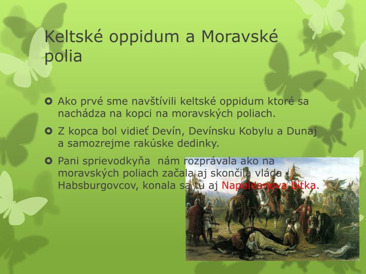 Keltské oppidum a Moravské polia