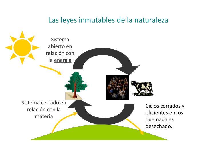 Las leyes inmutables de la naturaleza