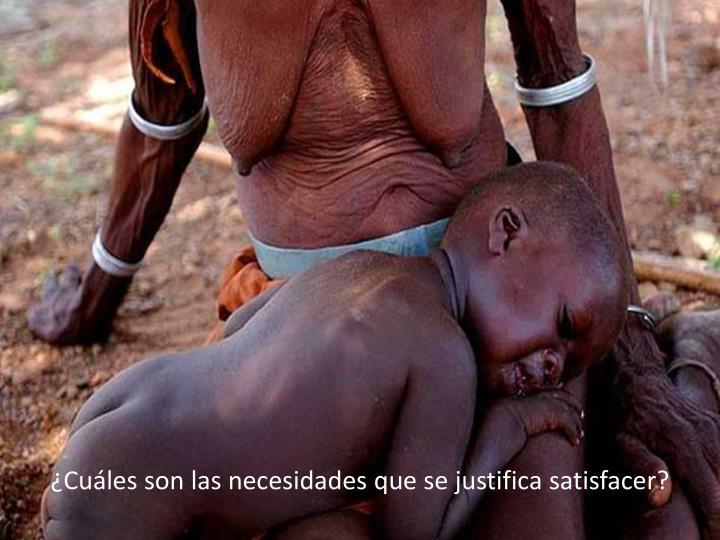 ¿Cuáles son las necesidades que se justifica satisfacer?