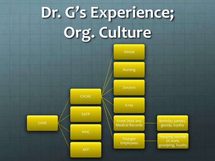 Dr g s experience org culture