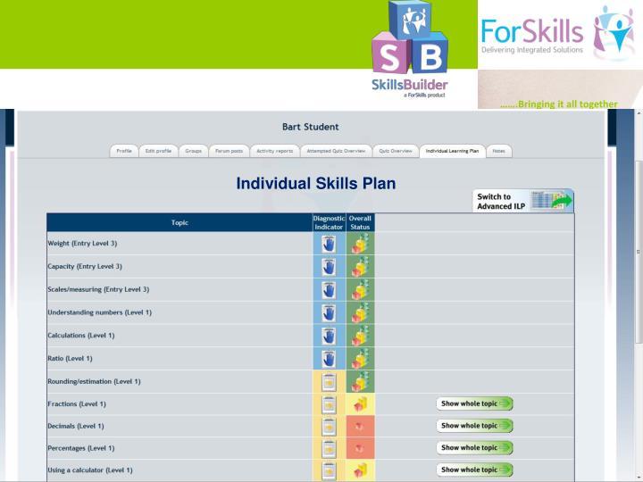 Individual Skills Plan