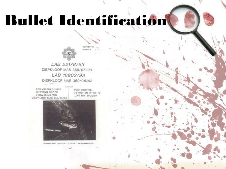 Bullet Identification