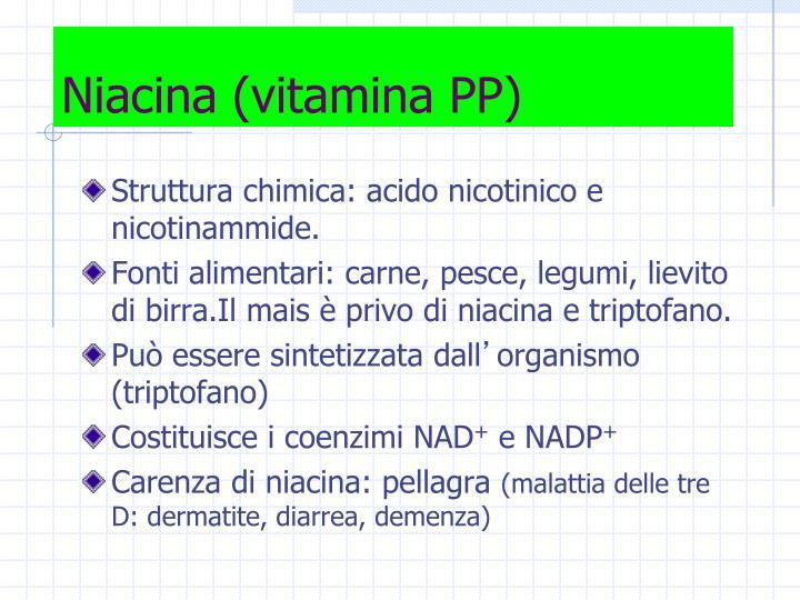 Niacina (vitamina PP)
