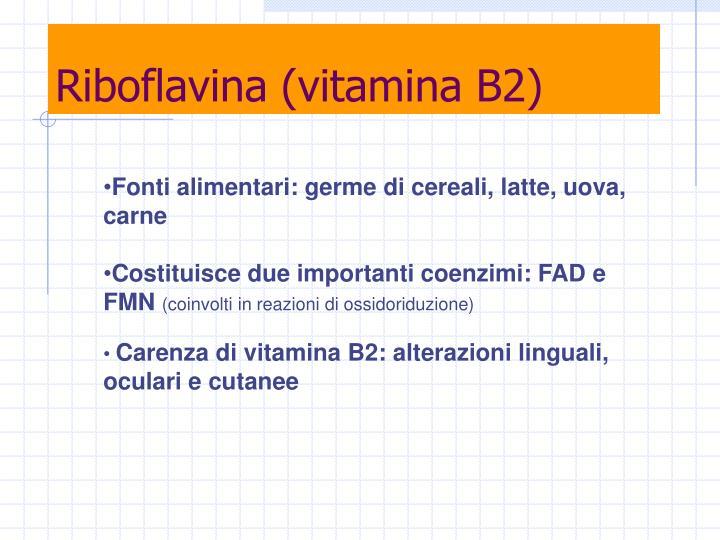 Riboflavina (vitamina B2)
