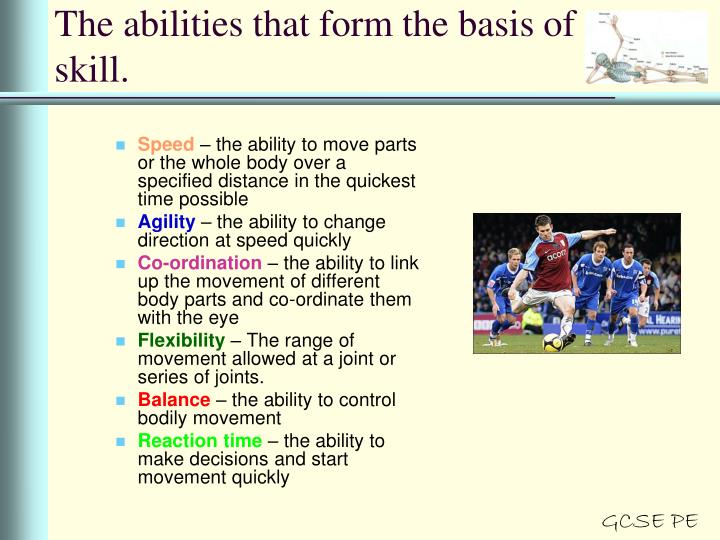 The abilities that form the basis of skill.