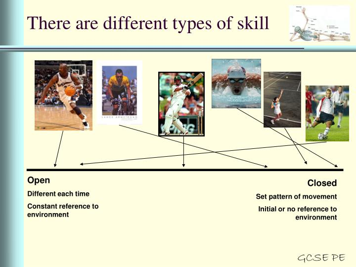 There are different types of skill