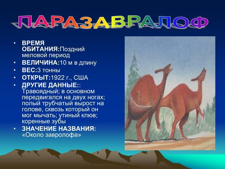 ПАРАЗАВРАЛОФ