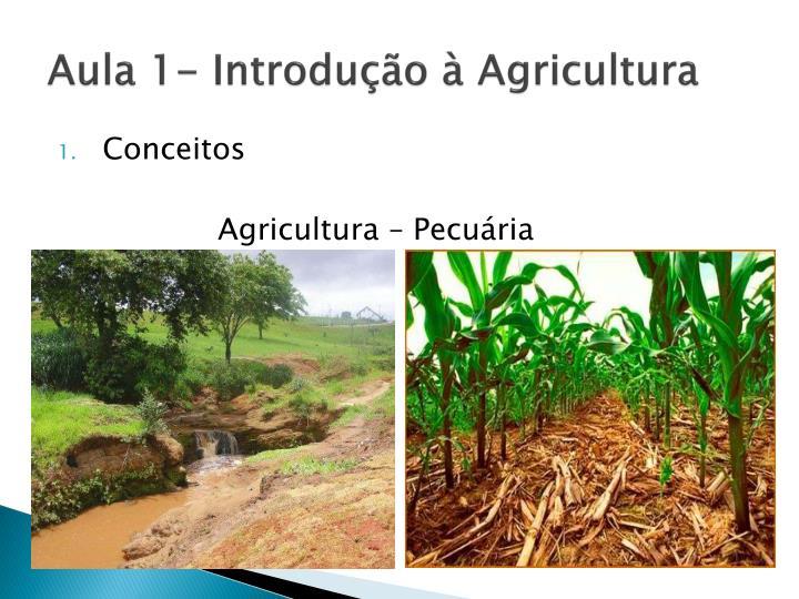 Aula 1- Introdução à Agricultura