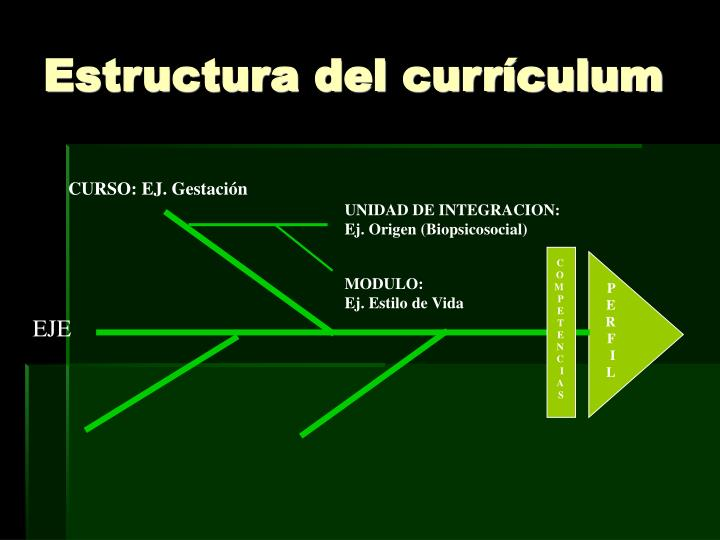Estructura del currículum