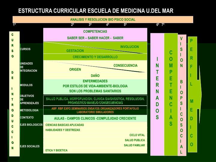 ESTRUCTURA CURRICULAR ESCUELA DE MEDICINA U.DEL MAR