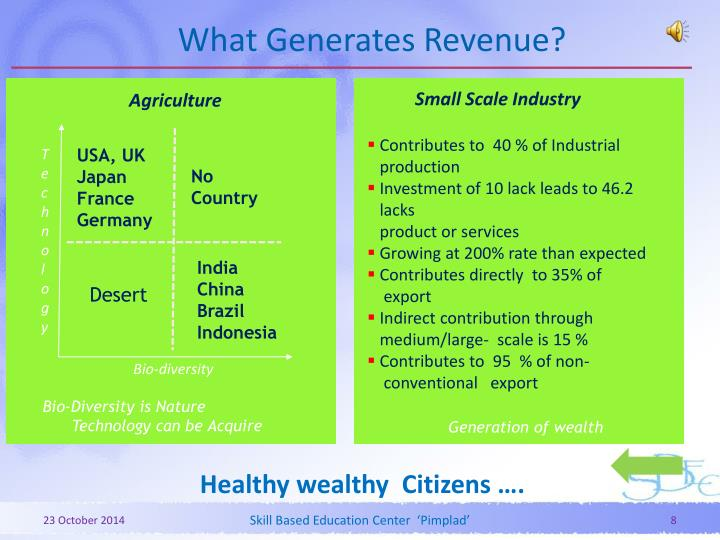 What Generates Revenue?
