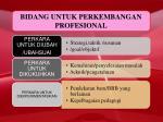 bidang untuk perkembangan profesional