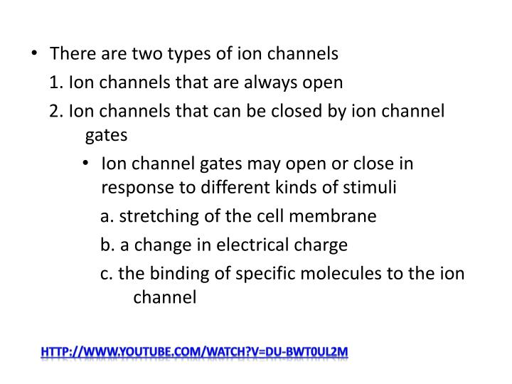 There are two types of ion channels