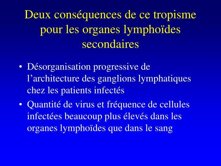 Deux consquences de ce tropisme pour les organes lymphodes secondaires