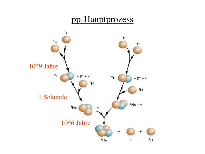 pp-Hauptprozess