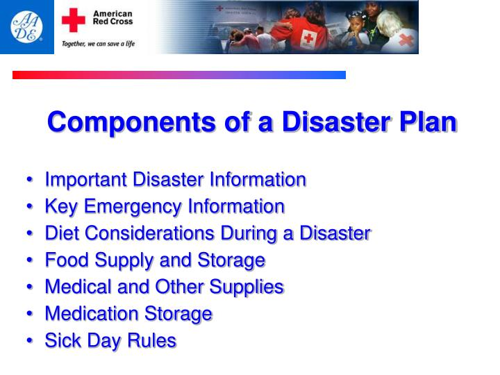 Components of a Disaster Plan