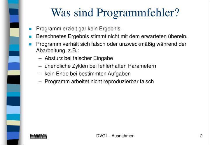 Was sind Programmfehler?
