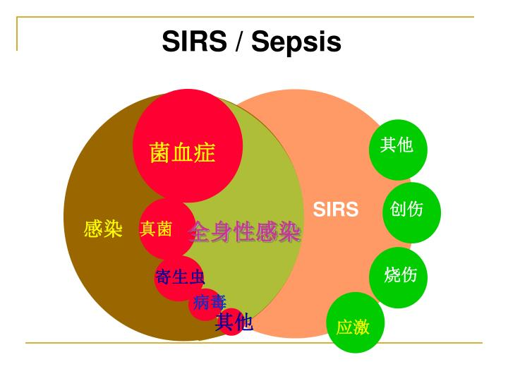 SIRS / Sepsis
