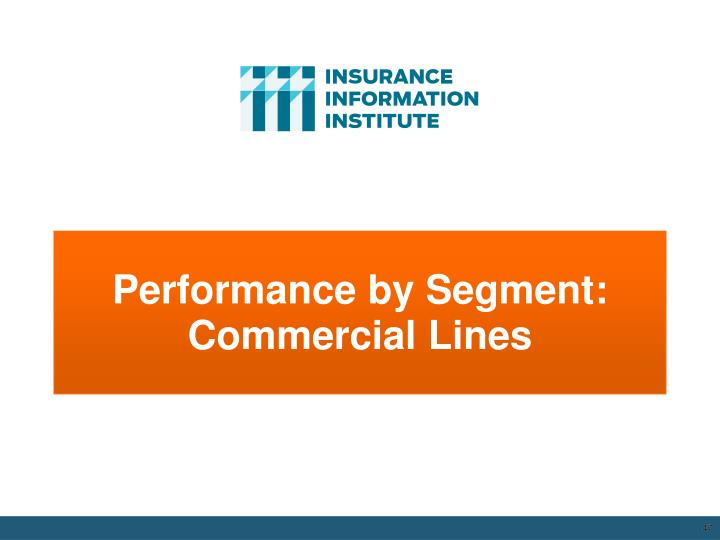 Performance by Segment: