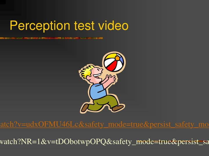 Perception test video