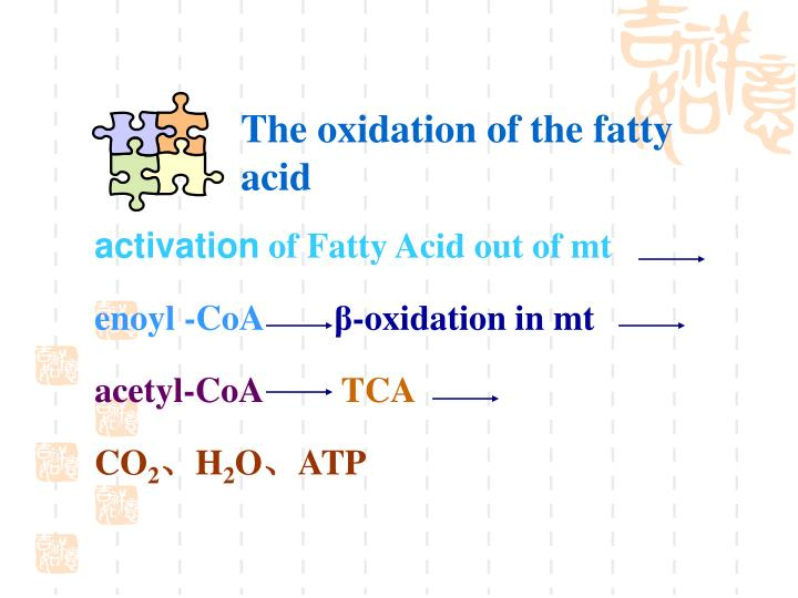 The oxidation of the fatty acid