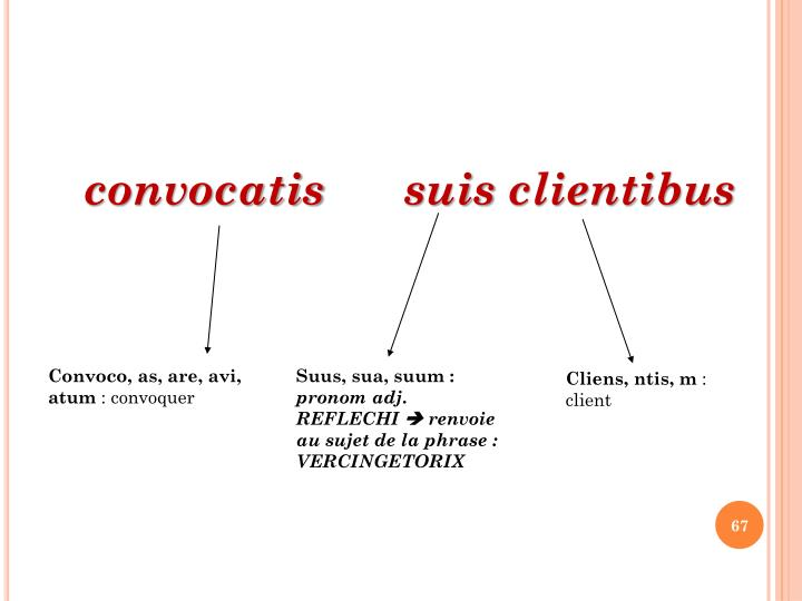 convocatis