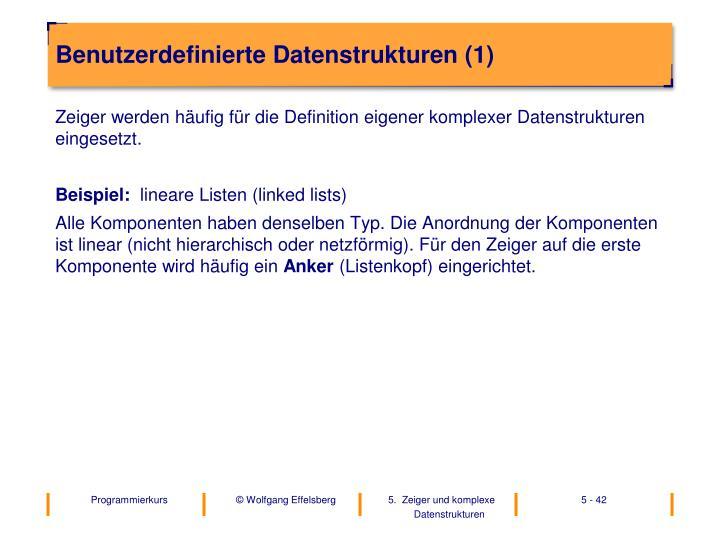 Benutzerdefinierte Datenstrukturen (1)