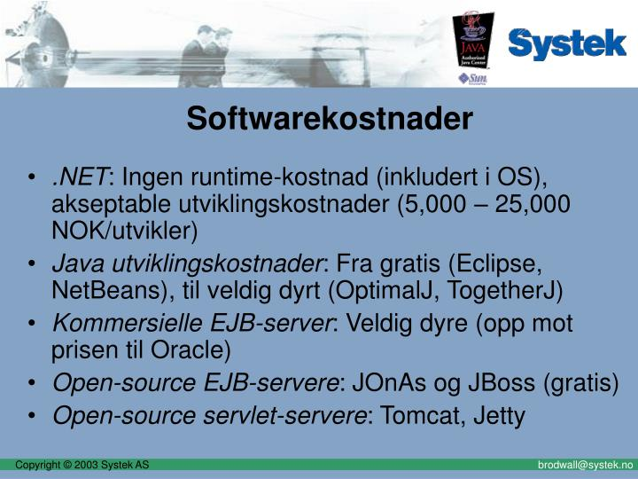 Softwarekostnader