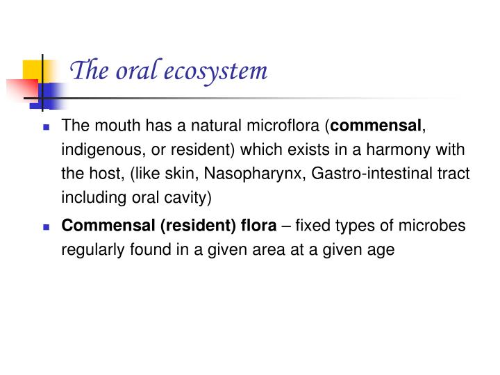 The oral ecosystem