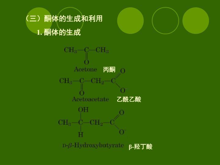 (三)酮体的生成和利用