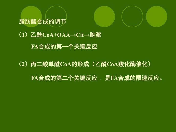 脂肪酸合成的调节