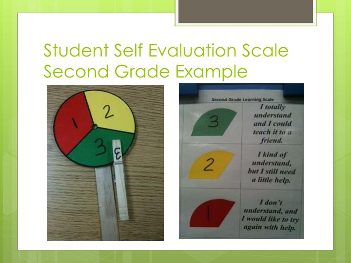 Student Self Evaluation Scale