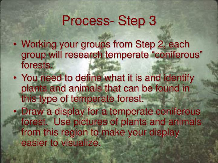 Process- Step 3