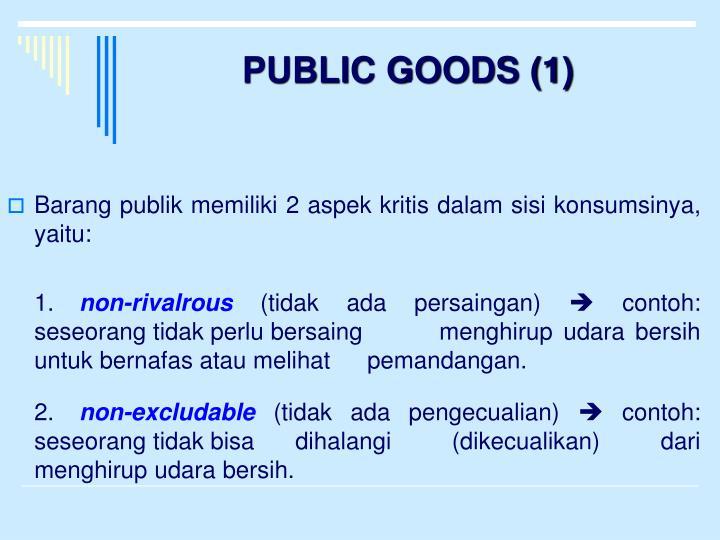 PUBLIC GOODS (1)